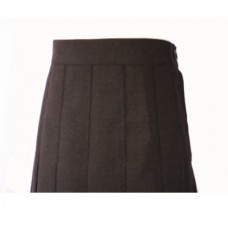 School Skirt Pleated