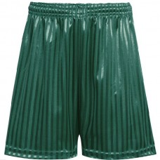 Shadow Stripe Short - Bottle Green