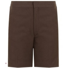 Shorts Standard Fit - Brown