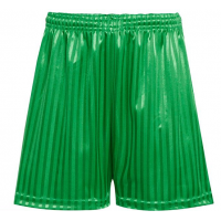 Shadow Stripe Short - Emerald Green