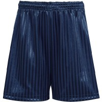 Shadow Stripe P.E Short - Navy Shorts