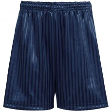 Shadow Stripe Short  - Navy Blue