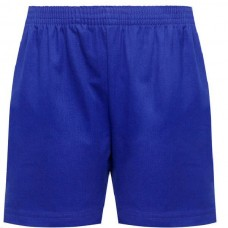 Sports Shorts Royal