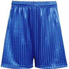 Shadow Stripe Short - Royal Blue